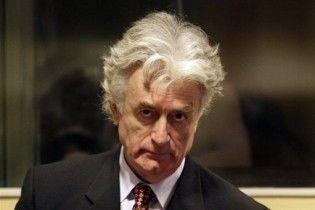 Караджич звинуватив Німеччину в приховуванні злочинів НАТО