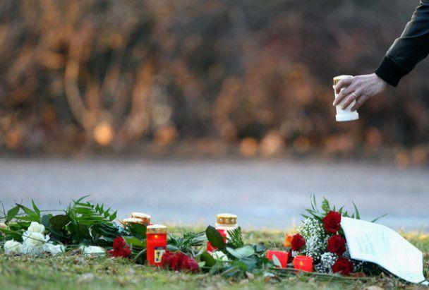 За вбивство німецьким підлітком 15 людей відповість його батько