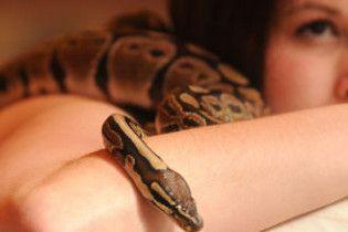 Британцям масаж роблять змії