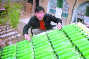 Китаєць-винахідник