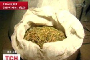 Правоохоронці вилучили у чоловіка 176 кілограмів марихуани