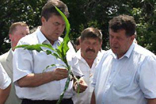 """Янукович: """"Хліб не подорожчає!"""""""