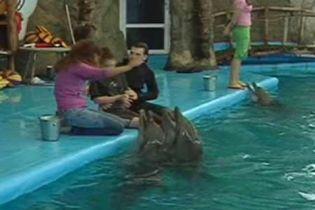 Для дельфінів створили школу з порятунку людей (відео)