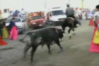 У Мексиці бик втік з кориди