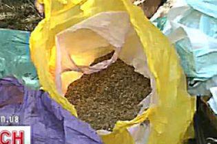 На Житомирщині заарештували наркобарона у спідниці