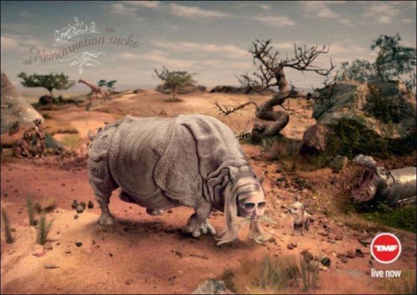 З Періс Хілтон зробили носорога