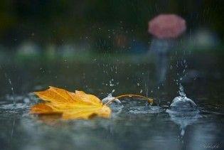 Погода в Україні на п`ятницю, 13 листопада
