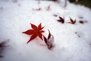 Погода в Україні на неділю, 13 грудня