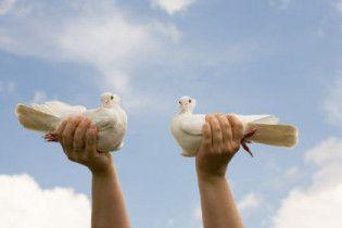 У Китаї через комуністів заборонили голубам літати