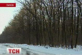 70 гектарів цінного лісу продали за підробним рішенням Печерського суду