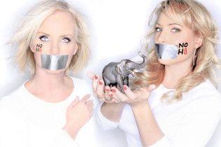 Дружина і дочка Маккейна виступили на підтримку одностатевих шлюбів