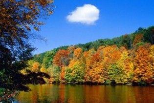 Погода в Україні на понеділок, 26 жовтня