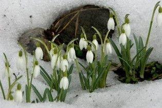 Погода в Україні на неділю, 21 березня