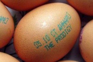 Концерт The Prodigy в Мінську рекламують на яйцях