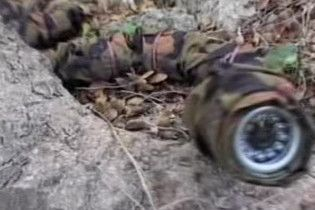 На озброєння Армії оборони Ізраїлю надійде робот-змія