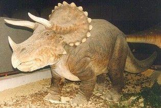 Британські студенти намагалися поцупити з музею 6-метрового динозавра