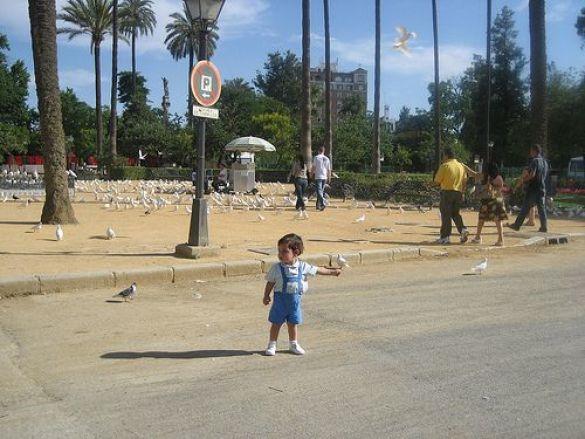 дитина (Фото: flickr.com)