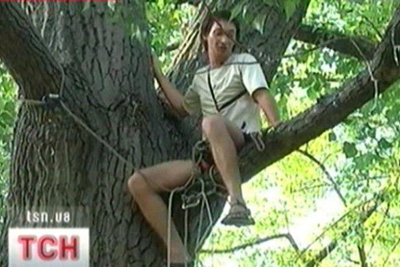 Чоловік на дереві