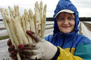 Українці на заробітках