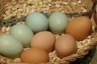 Мачуха вбила дворічного пасинка через куряче яйце