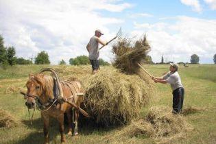 На Харківщині селяни організували комуну (відео)