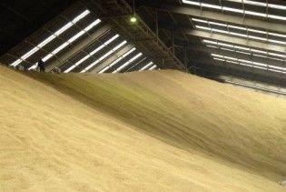 Імпортовану з Росії пшеницю визнали непридатною до вживання