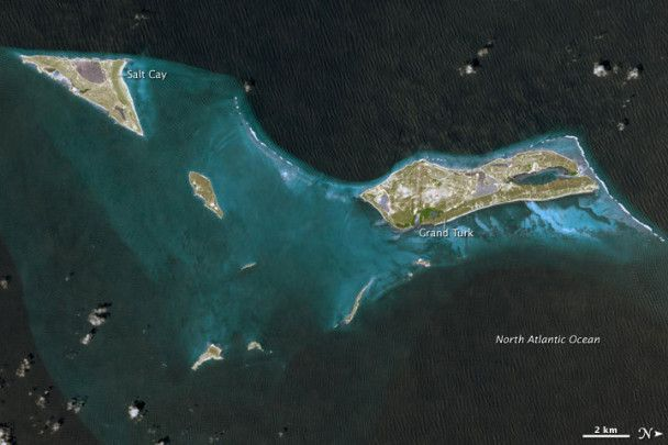 NASA сфотографувало коралового птеродактиля над океаном
