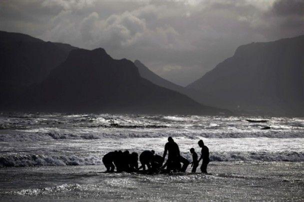 Вчені застрелили 30 китів-самогубців, які викинулися на берег
