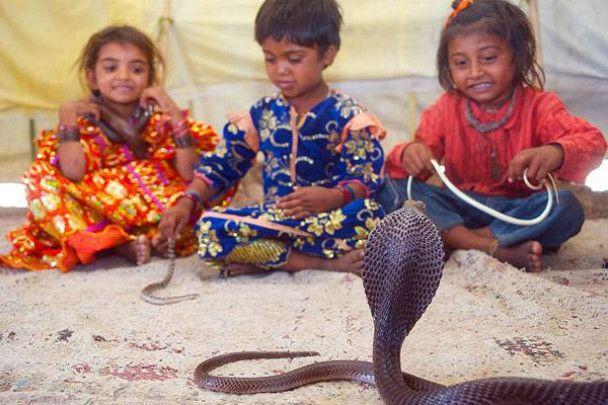 Дворічні діти в Індії заклинають змій