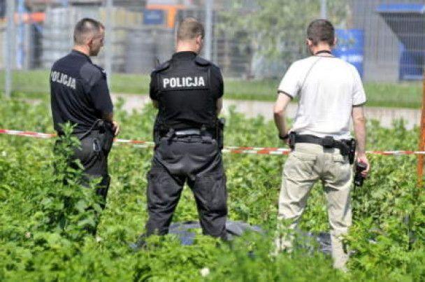 У Кракові впав баштовий кран: троє людей загинули