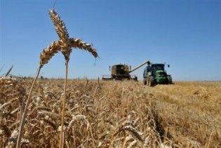 Україна знизить експорт зернових