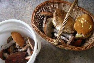 На Хмельниччині 13 людей отруїлися грибами
