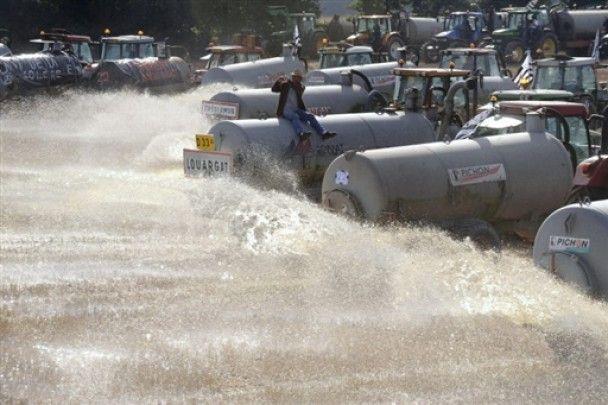 Німецькі фермери, протестуючи, утопили в молоці 1,5 тонн риби