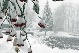 Жертвами снігопадів у Польщі стали четверо людей