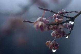 Погода в Україні на вівторок, 8 грудня