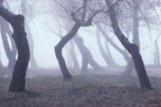Погода в Україні на п`ятницю, 4 грудня