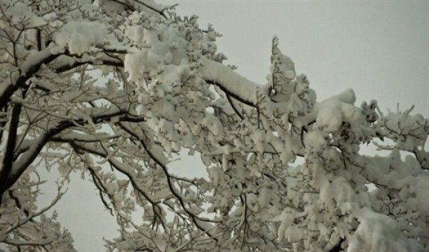 Рекордний снігопад паралізував Вашингтон