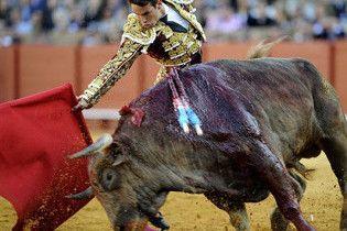 У Барселоні останній бій биків: віднині криваві кориди заборонені