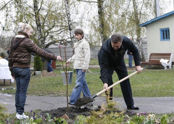 Янукович з дітьми посадив яблуню