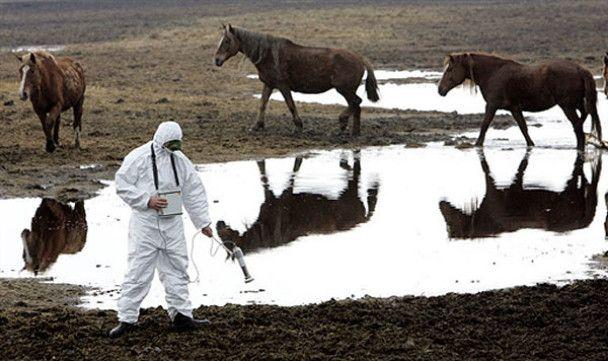 Названо екологічно найнебезпечніші регіони України