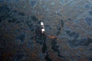 Захисний бар'єр від розливу нафти в Луїзіані намагаються створити з волосся