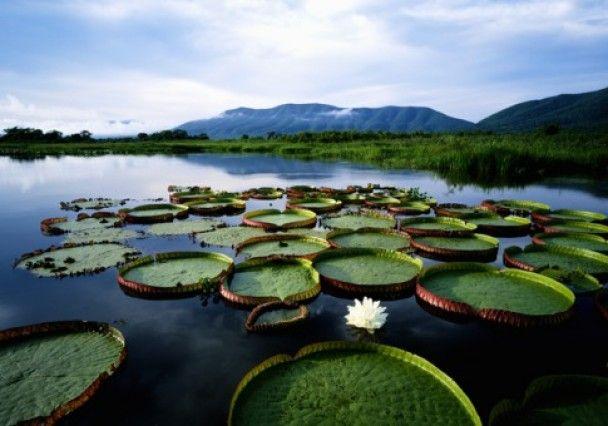 Топ-10 найкращих екологічних маршрутів для мандрівників