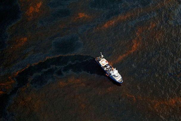 """Мексиканська затока пережила рік """"нафтового Чорнобилю"""""""