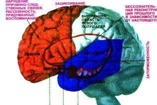Людський мозок починає старіти в 27 років
