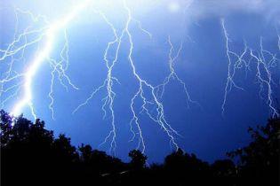Семью поразила молния на огороде (видео)