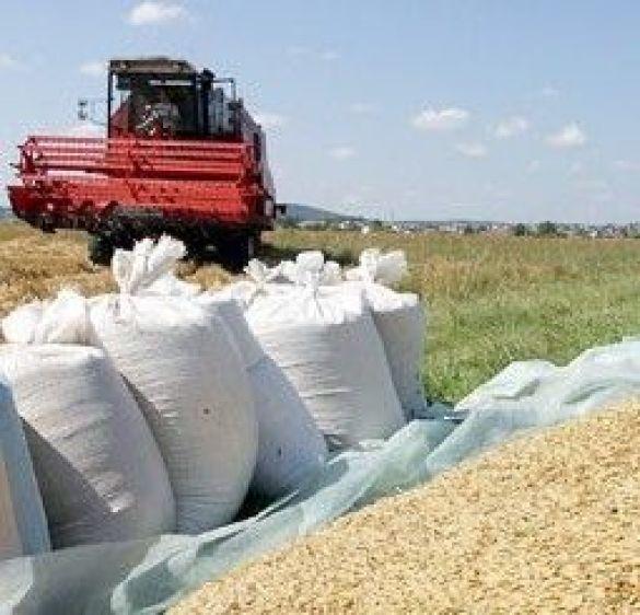 Квоти на експорт зерна