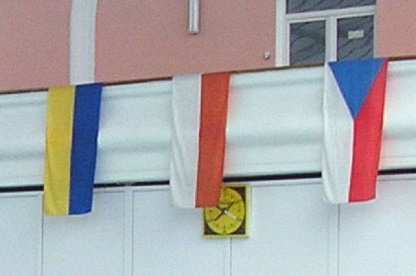 Київ побачив найкращих плавців України