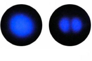 Українські вчені вперше в світі сфотографували атом