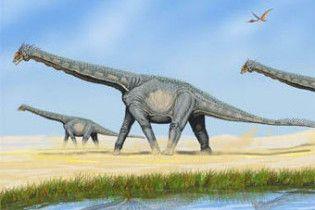 У Австралії знайшли невідомий вид динозаврів
