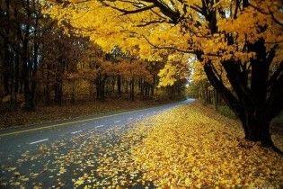 Погода в Україні на суботу, 31 жовтня